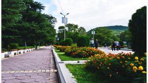Община Сандански монтира нови камери за видеонаблюдение в парк  Свети Врач